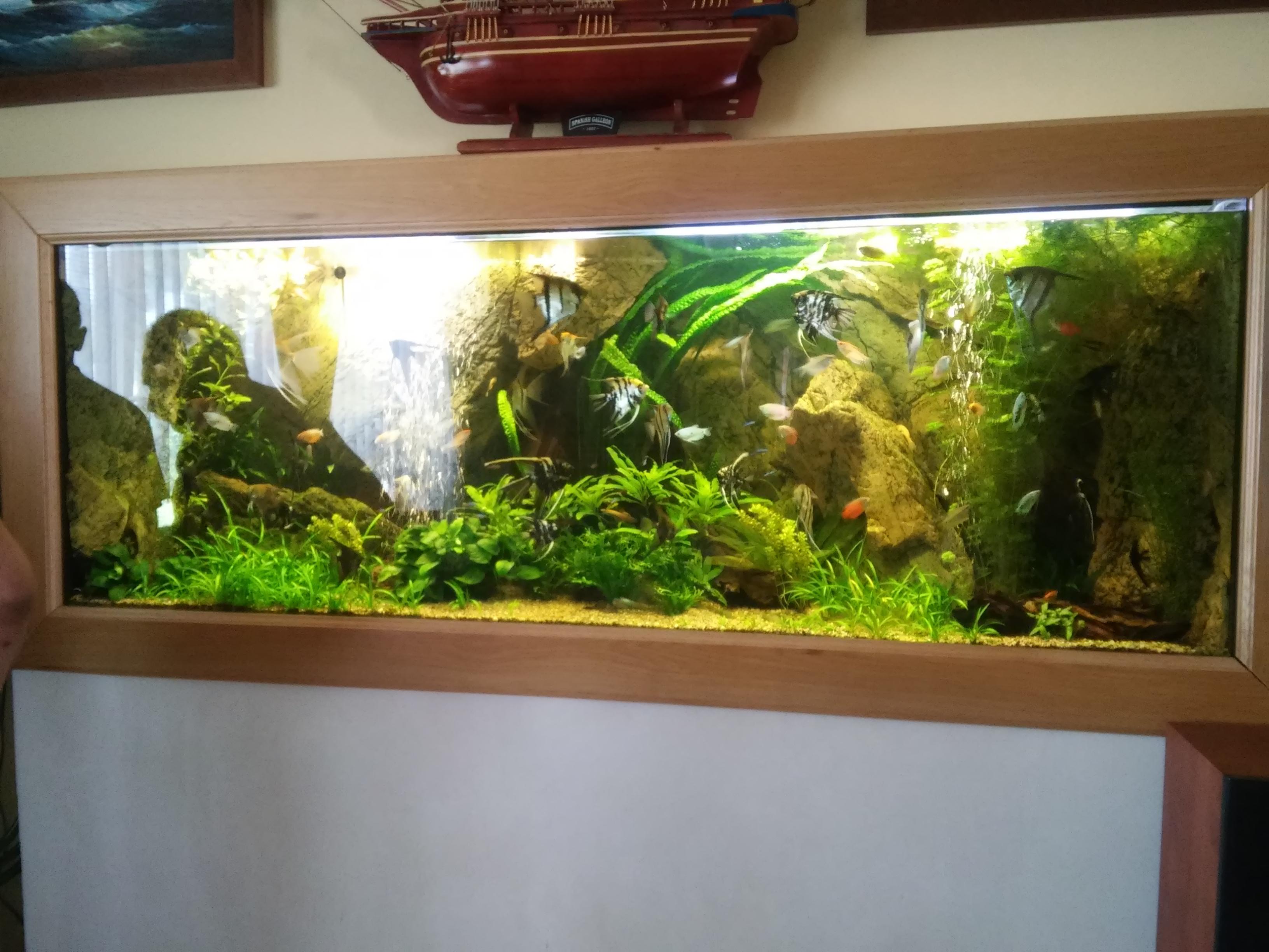 Akvarium na mieru Bytca rastlinkove