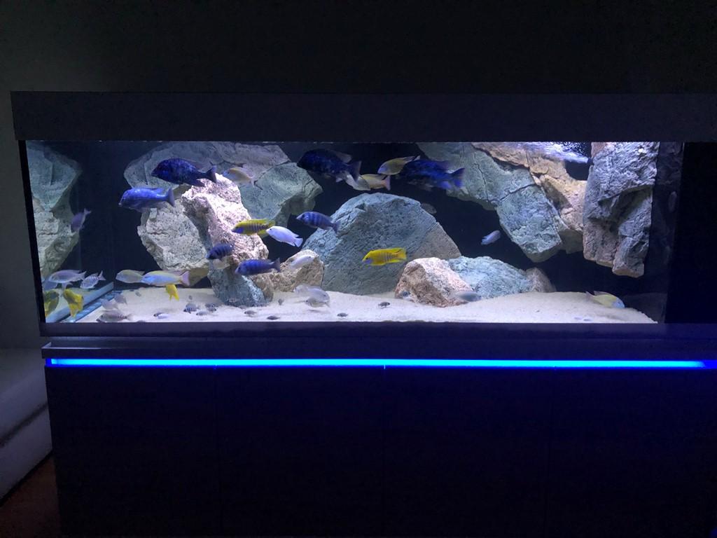 Akvárium na mieru Morava 2