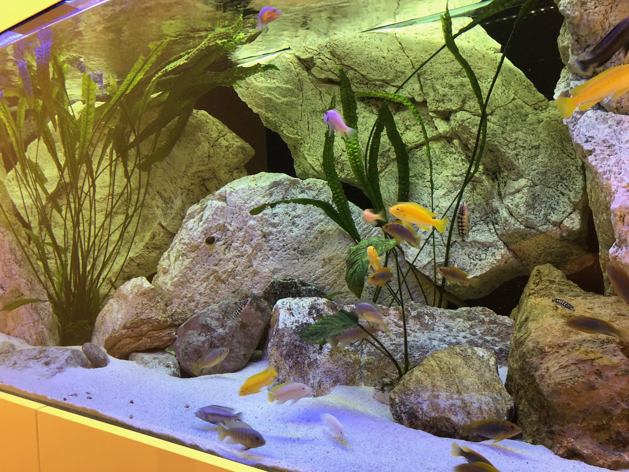 Akvarium na mieru ZA 3